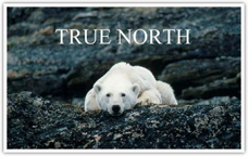 True_North