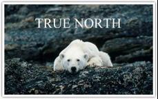 True_North